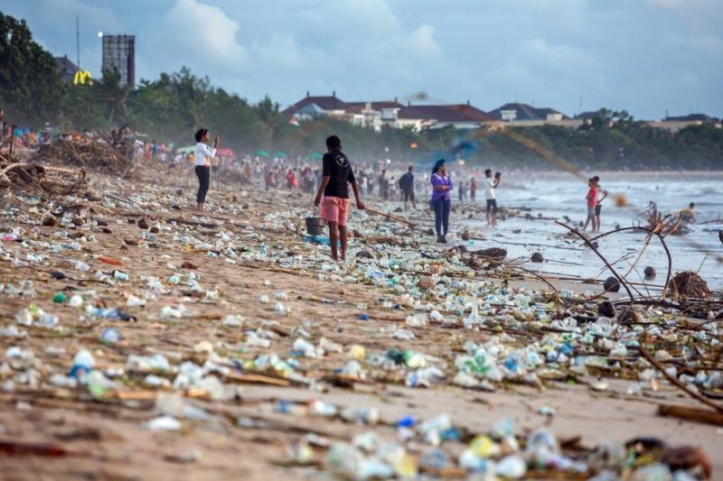 Пластмассовый мир не победит! Как остановить пластиковый апокалипсис?